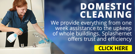 domestic cleaners bristol